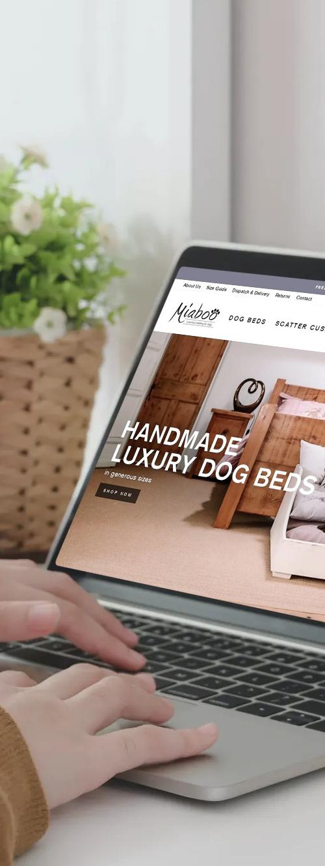 Shopify Store Website designer